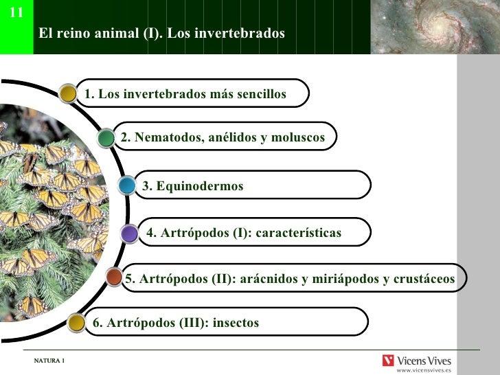 El reino animal (I). Los invertebrados 5. Artr ópodos (II): arácnidos y miriápodos y crustáceos   4. Artr ópodos (I): cara...