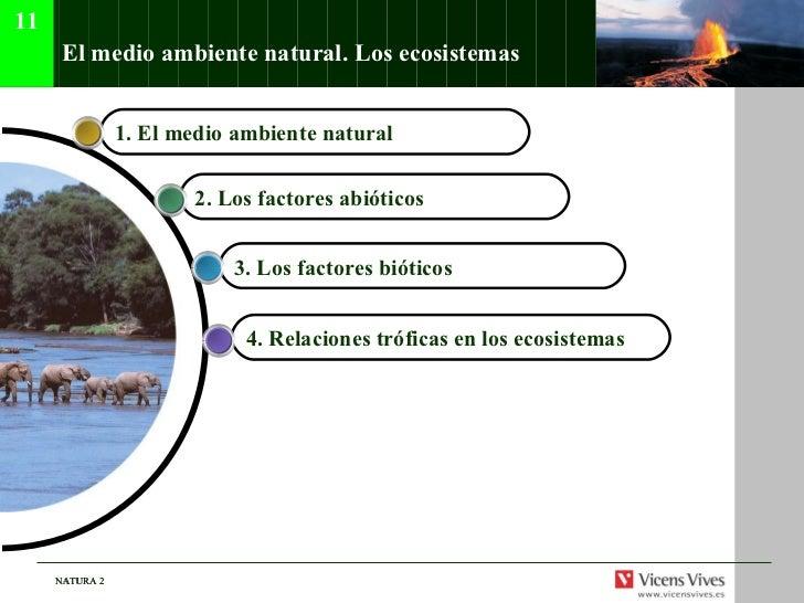 El medio ambiente natural. Los ecosistemas.