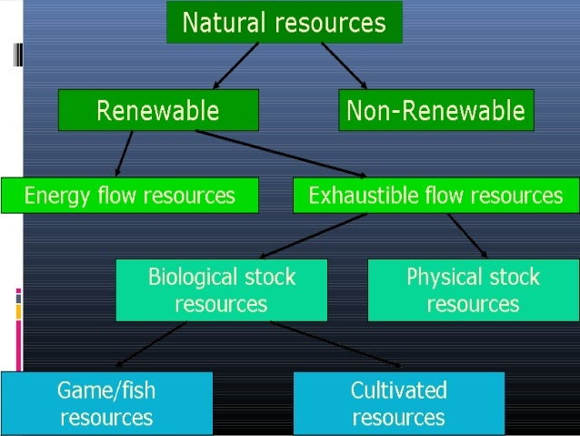 Which Of The Following Is Not A Natural Resource