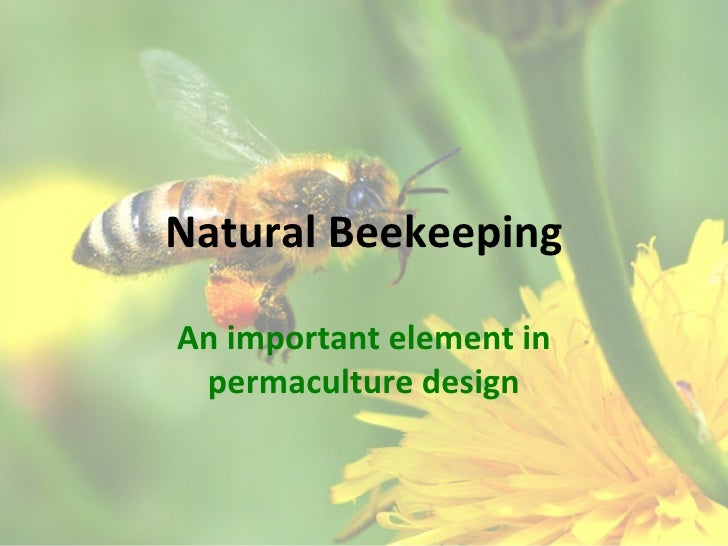 Natural BeekeepingAn important element in permaculture design