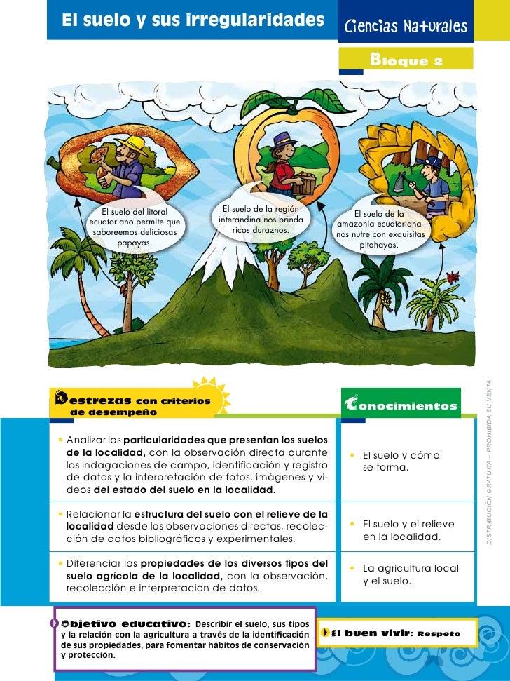 Naturales 4 for Como se forma y desarrolla el suelo