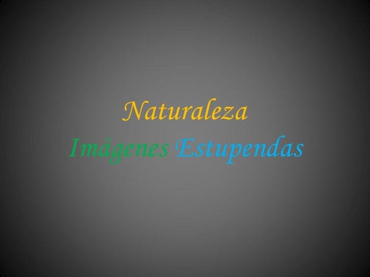 Naturaleza Imágenes   Estupendas