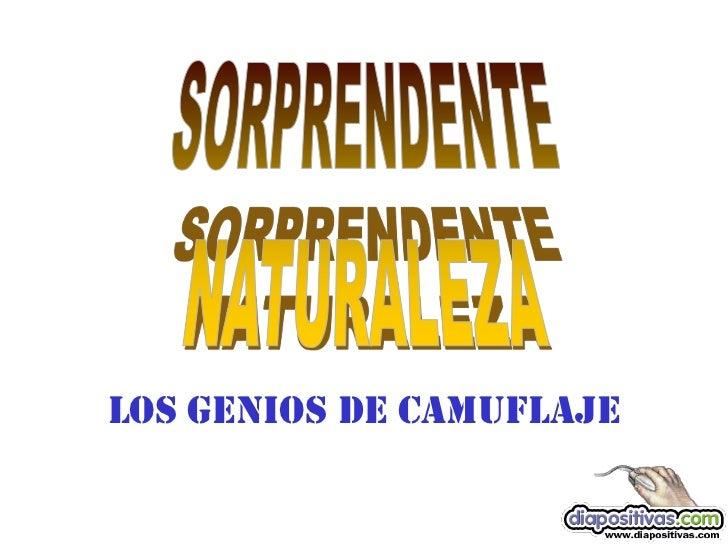 LOS GENIOS DE CAMUFLAJE