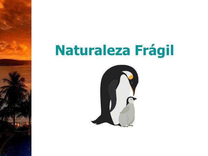 Naturaleza Frágil