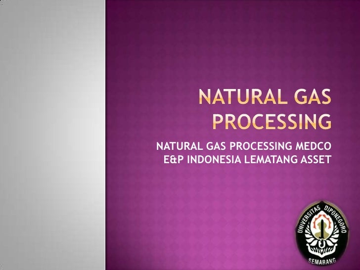 NATURAL GAS PROCESSING MEDCO E&P INDONESIA LEMATANG ASSET