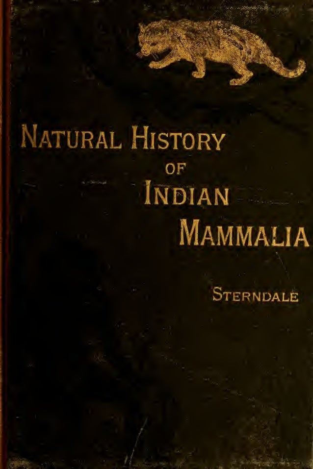Natural History of the Mammalia of India and Ceylon by Robert A. Sterndale