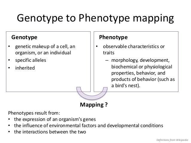 how to write genotype and phenotype ratios
