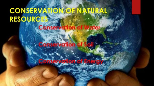 Essays on depletion of natural resources