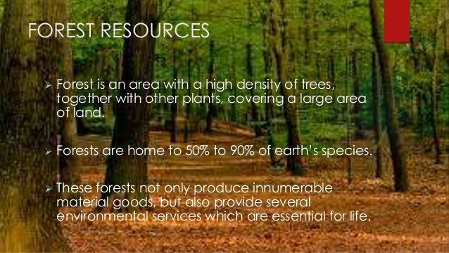 conservation of forest resources The level of employment in forest management and conservation is it is also clear that there are many positive developments regarding forest resources.