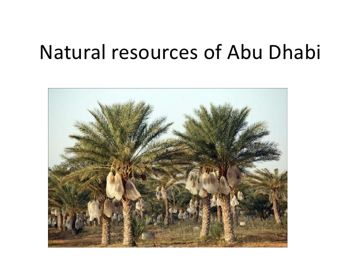 Natural resources of Abu Dhabi<br />