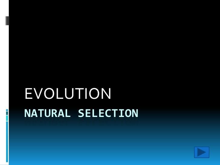 NATURAL SELECTION<br />EVOLUTION<br />