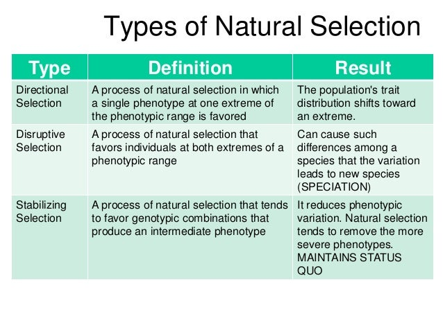 Phenotypic Variation And Natural Selection Of