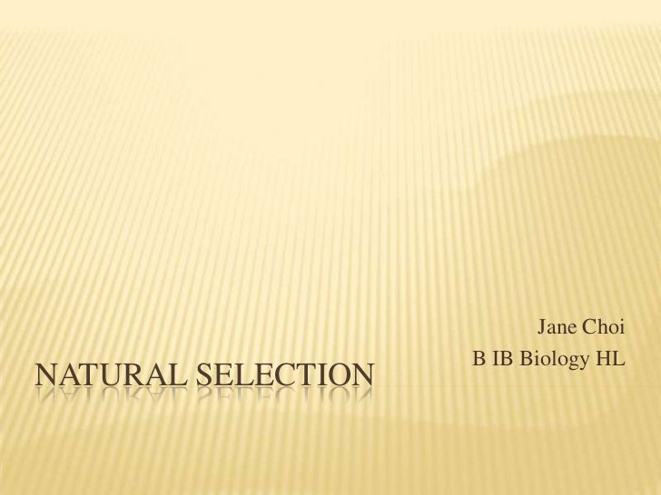 5.4 Natural Selection (by Jane Choi)
