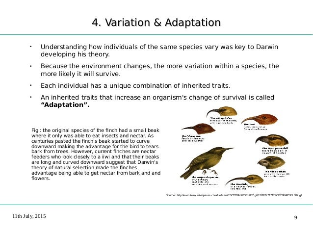 evolutionary perspective natural selection and adaptive Ordinary psychology is to evolutionary psychology as  served the natural selection enabling of our  and the evolutionary adaptive value has to do with.