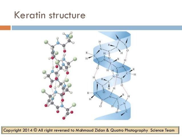 keratin structure and function pdf