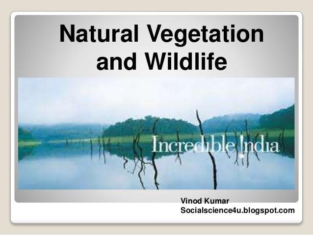 Natural Vegetation and Wildlife Vinod Kumar Socialscience4u.blogspot.com