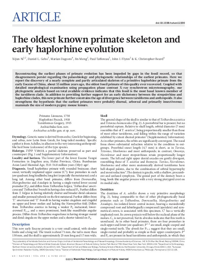 ARTICLE doi:10.1038/nature12200The oldest known primate skeleton andearly haplorhine evolutionXijun Ni1,2, Daniel L. Gebo3...