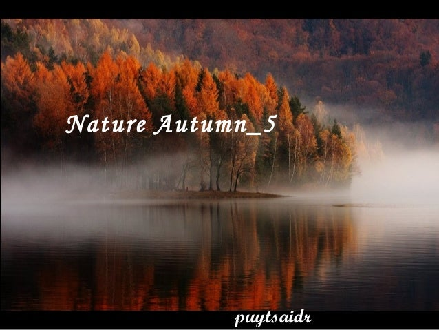 Nature Autumn_5 puytsaidr