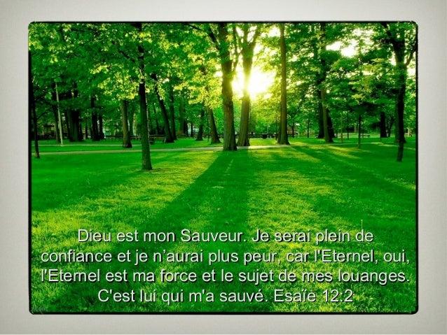 PRIERE pour notre Frère GILLES - Page 4 La-nature-de-dieu-16-638