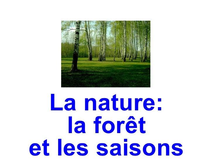 La nature:    la forêtet les saisons