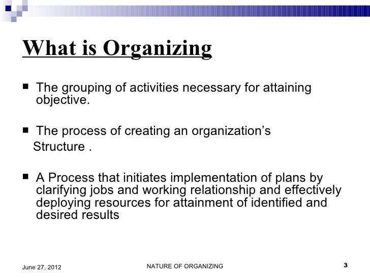 origins of formal organizations and the advantages and disadvantages of bureaucracy Video: bureaucratic organizations: examples & characteristics the history & impact of governmental bureaucracy in the us explain the advantages and disadvantages of these types of organizations.