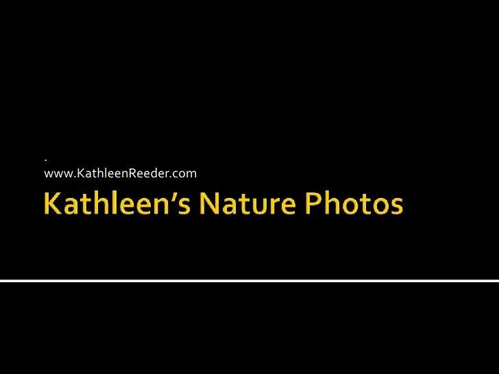 Kathleen's Nature Photos<br />.<br />www.KathleenReeder.com<br />