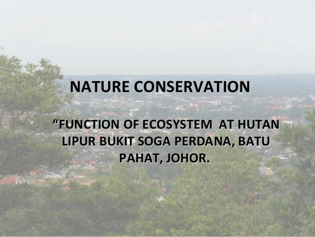 "NATURE CONSERVATION ""FUNCTION OF ECOSYSTEM AT HUTAN LIPUR BUKIT SOGA PERDANA, BATU PAHAT, JOHOR."