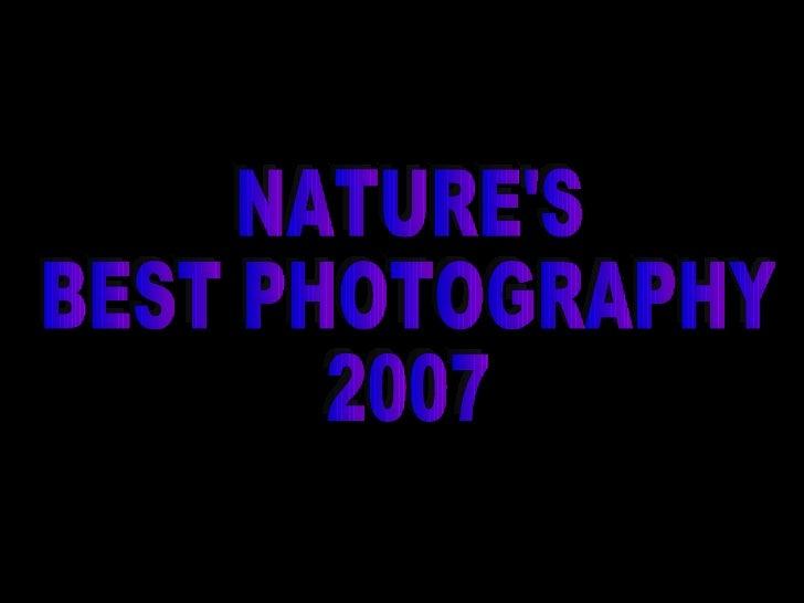 Naturesbestphotography