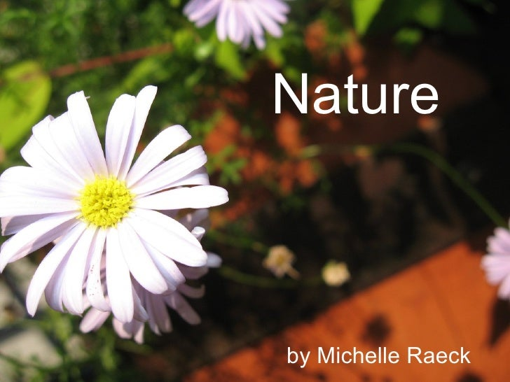 Nature by Michelle Raeck