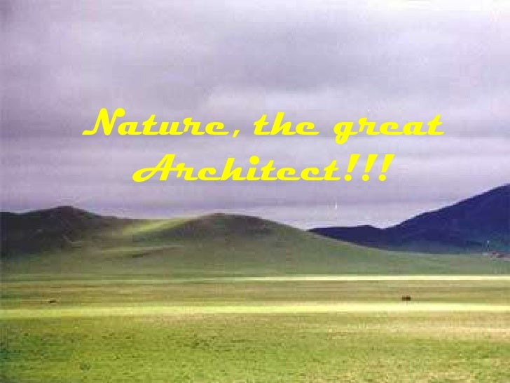 Nature, the great Architect!!! <br />