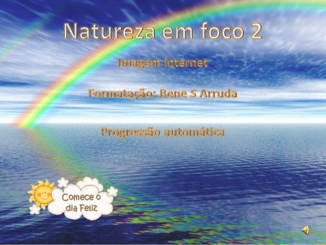 Natureza em foco 2