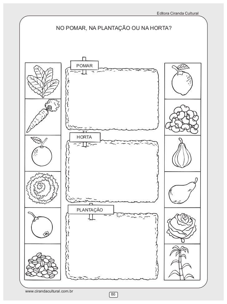 imagens de jardim horta e pomar : imagens de jardim horta e pomar:de diferentes tipos de árvore www cirandacultural com br 84