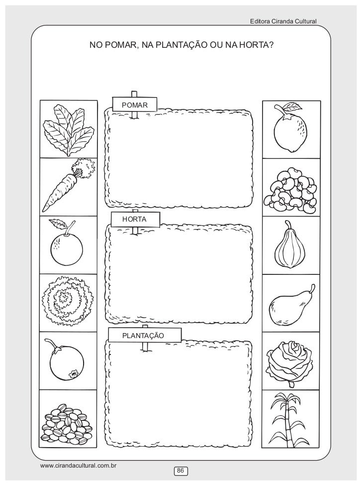 jardim horta e pomar educacao infantilNatureza e Sociedade