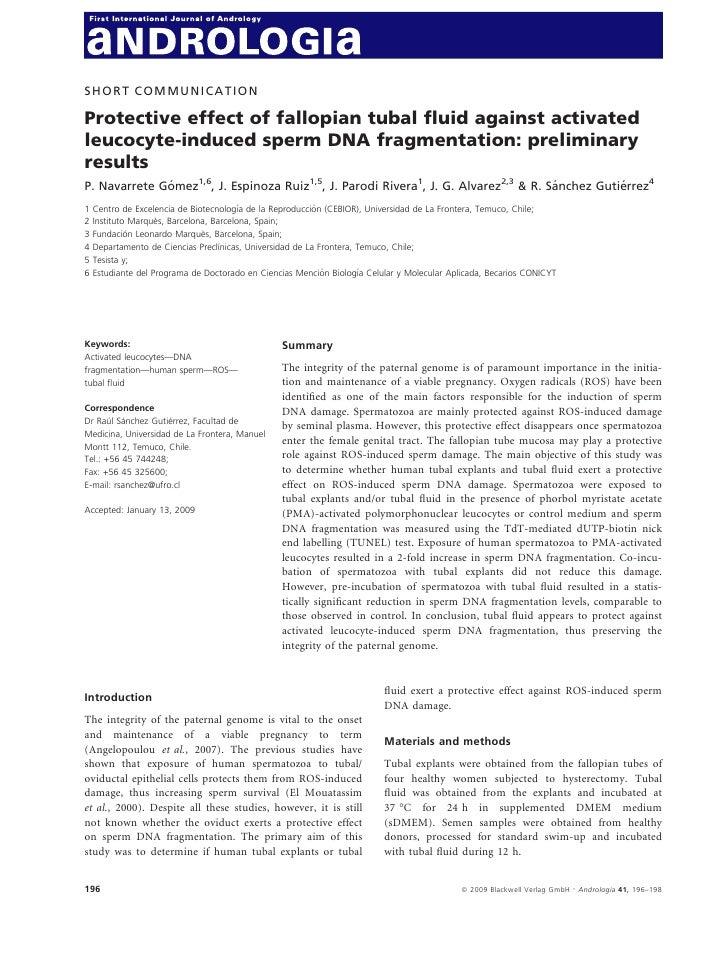 SHORT COMMUNICATIONProtective effect of fallopian tubal fluid against activatedleucocyte-induced sperm DNA fragmentation: p...