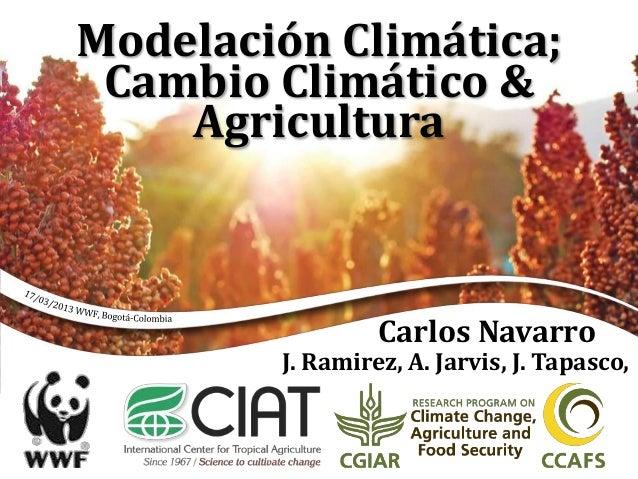 Modelación Climática; Cambio Climático & Agricultura Carlos Navarro J. Ramirez, A. Jarvis, J. Tapasco,