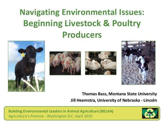 Navigating Environmental Issues: Beginning Livestock & Poultry Producers Thomas Bass, Montana State University Jill Heemst...