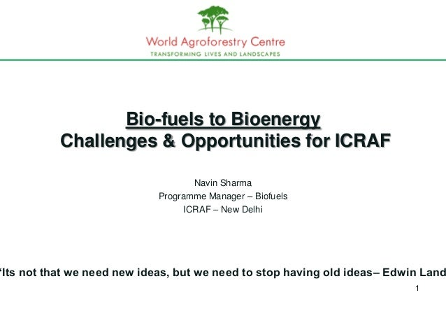 Bio-fuels to Bioenergy           Challenges & Opportunities for ICRAF                                     Navin Sharma    ...