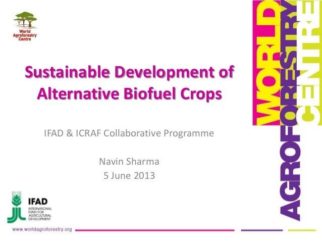Sustainable Development ofAlternative Biofuel CropsIFAD & ICRAF Collaborative ProgrammeNavin Sharma5 June 2013