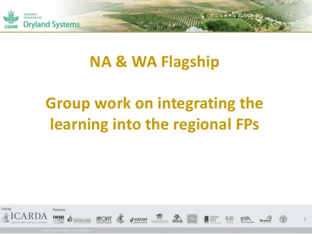 NA & WA Flagship Group work on integrating the learning into the regional FPs 1