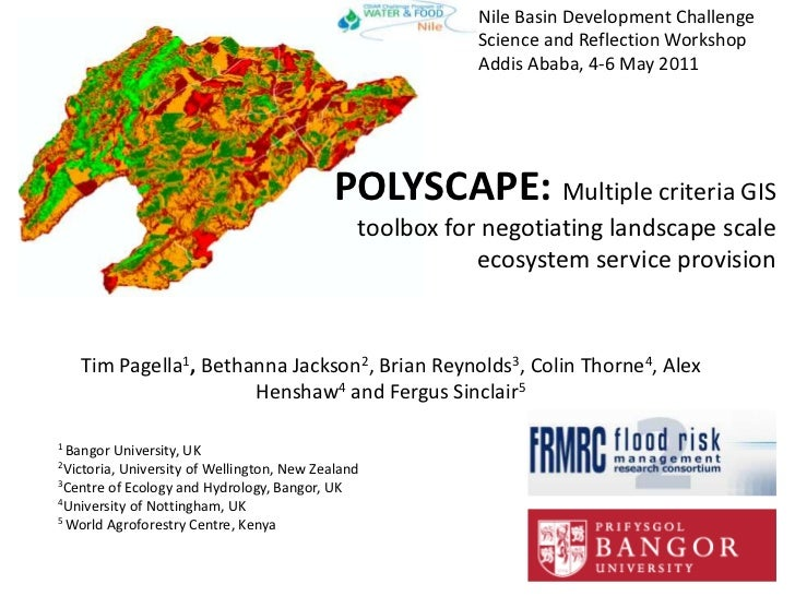 Nile Basin Development ChallengeScience and Reflection WorkshopAddis Ababa, 4-6 May 2011<br />POLYSCAPE: Multiple criteria...