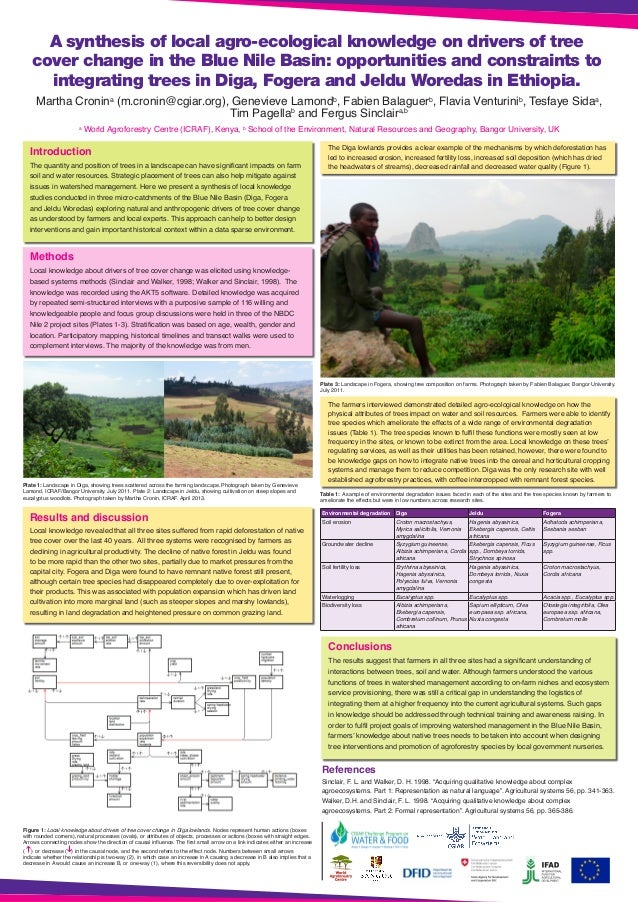 A synthesis of local agro-ecological knowledge on drivers of tree cover change in the Blue Nile Basin: opportunities and c...