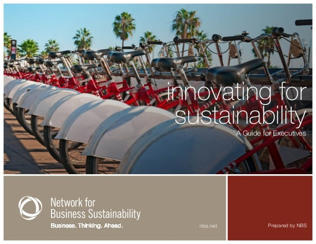 Innovating for Sustainability: A Guide for Executives