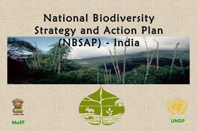 UNDPMoEFNational BiodiversityNational BiodiversityStrategy and Action PlanStrategy and Action Plan(NBSAP) - India(NBSAP) -...