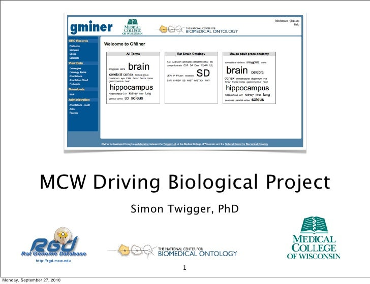 MCW Driving Biological Project                              Simon Twigger, PhD                                          1 ...