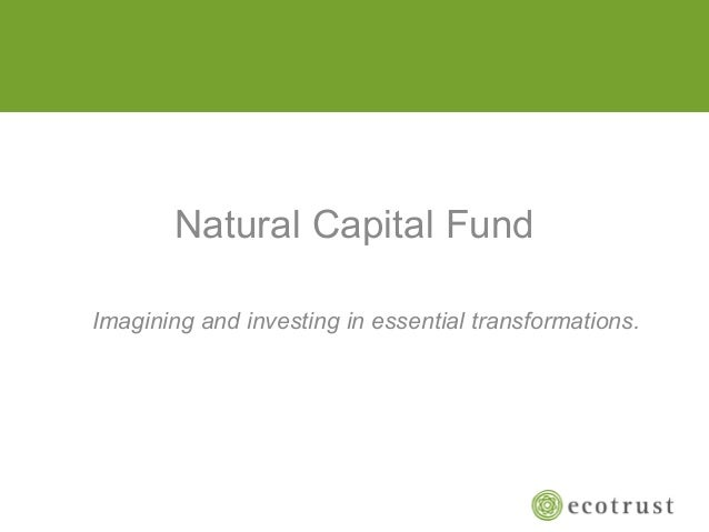 Natural Capital FundImagining and investing in essential transformations.