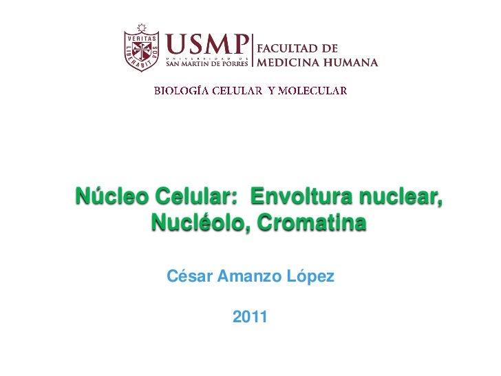 Núcleo Celular: Envoltura nuclear,      Nucléolo, Cromatina        César Amanzo López               2011