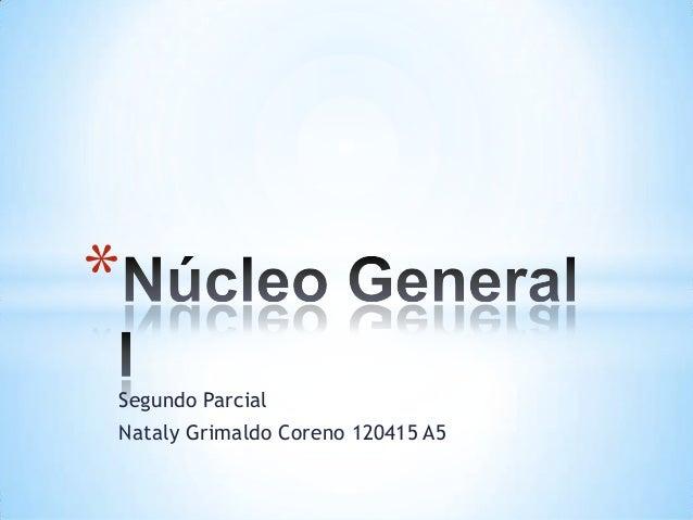 *Segundo ParcialNataly Grimaldo Coreno 120415 A5