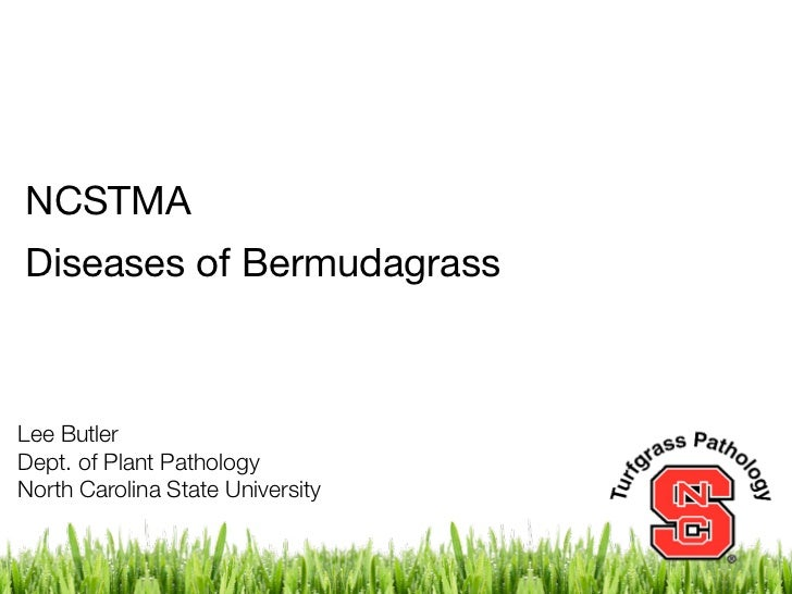 NCSTMA - Diseases of Bermudagrass