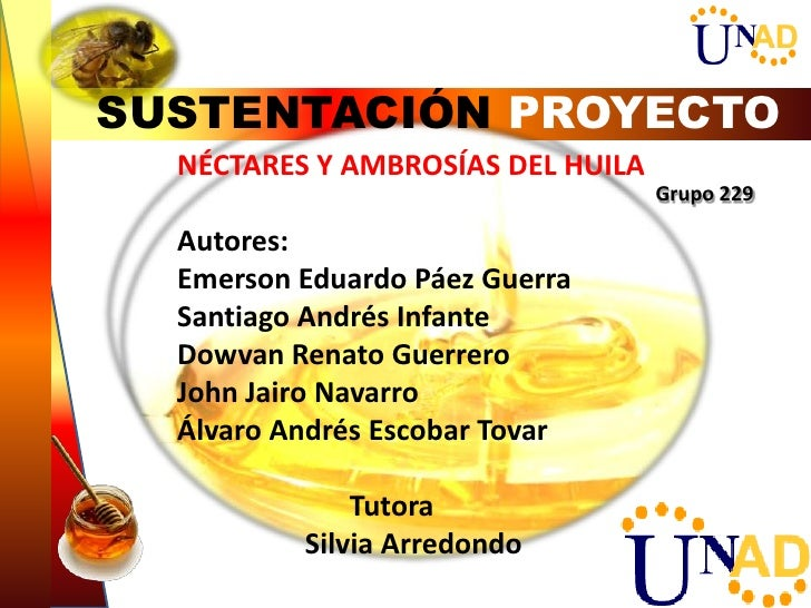 SUSTENTACIÓN PROYECTON NÉCTARES Y AMBROSÍAS DEL HUILA Grupo 229    Autores:    Emerson Eduardo Páez Guerra    Santiago And...