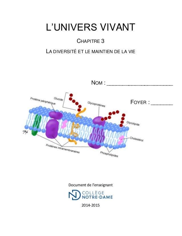 L'UNIVERS VIVANT CHAPITRE 3 LA DIVERSITÉ ET LE MAINTIEN DE LA VIE NOM : _____________________ FOYER : _______ Document de ...